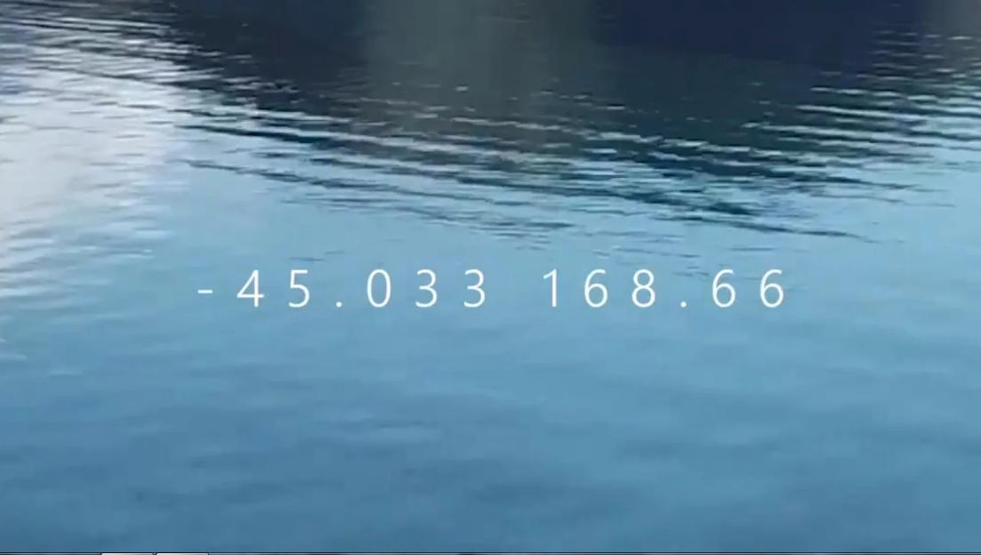 88998899